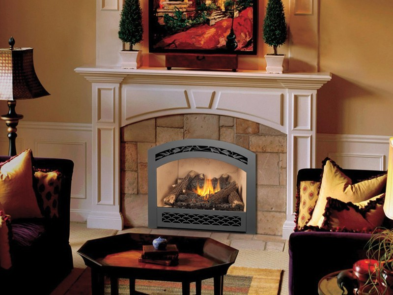 Best Gas Fireplace Insert With Blower My Rome