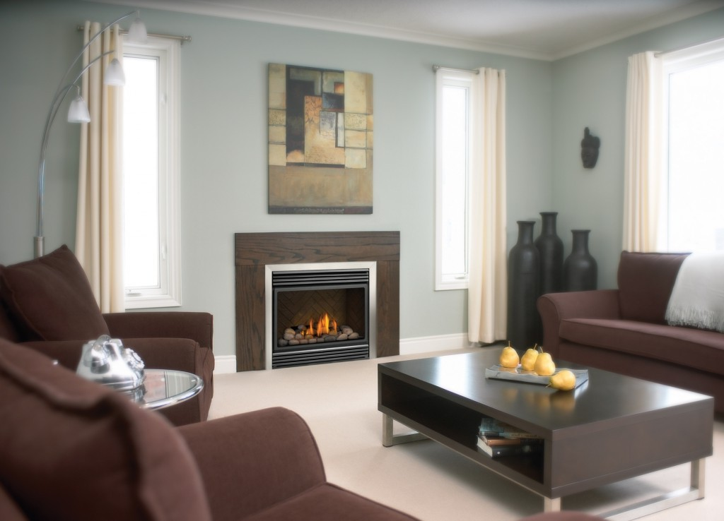 Flueless Gas Fireplace On Custom Fireplace Quality